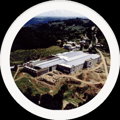 Profesionalización y elaboración de vinos finos y premium